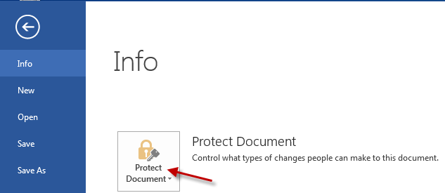 image of Protect Document option