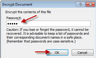 image of the Encrypt Document - set password