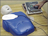 Image of CPR Dummy